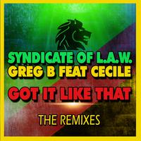 SYNDICATE OF L.A.W. & GREG B feat. CECILE - Got it Like That (The Remixes)