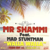 MR SHAMMI feat. MAD STUNTMAN