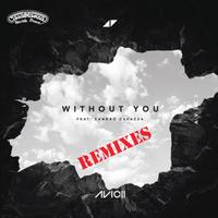 AVICII - Without You (New Remixes)