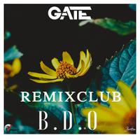 GATE  - BDO Remix Club